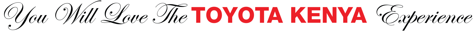 you will love the Toyota Kenya Experience